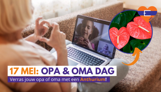 ANBO opa & oma dag, winactie anthurium